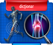 dictionar ortopedie